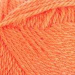 1207 Carrot