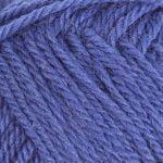 1213 Blue Iris
